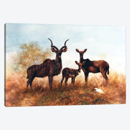 Kudus In The Savannah Canvas Print #GIO16} by Giordano Studios Canvas Art