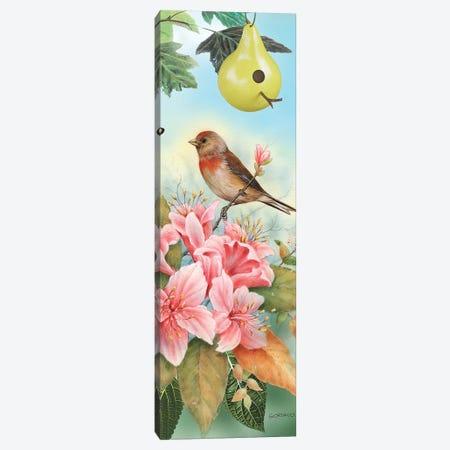 A Finch For The Season 3-Piece Canvas #GIO27} by Giordano Studios Canvas Art Print