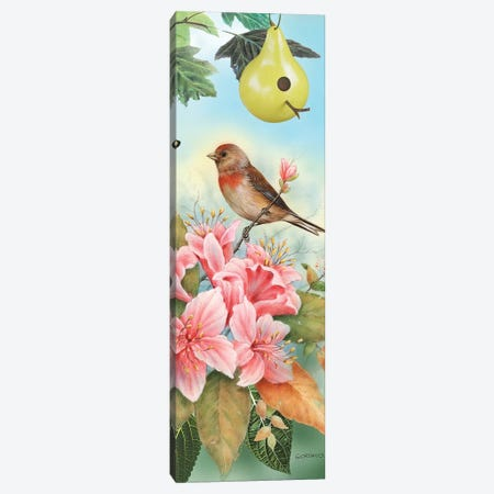 A Finch For The Season Canvas Print #GIO27} by Giordano Studios Canvas Art Print