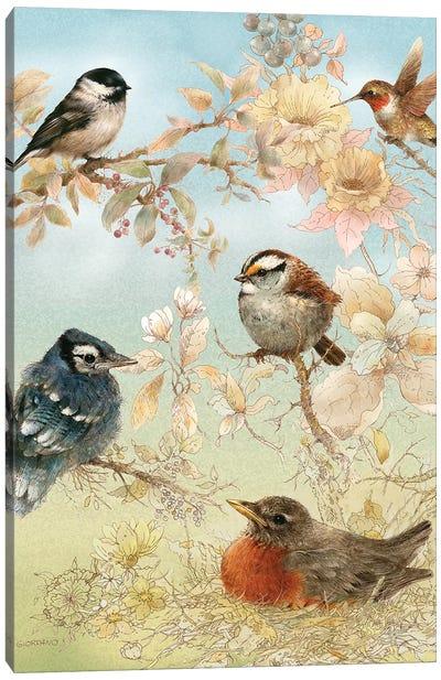 Baby Songbirds Canvas Art Print