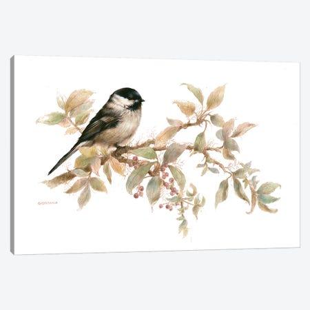 Chickadee Vignette Canvas Print #GIO33} by Giordano Studios Art Print