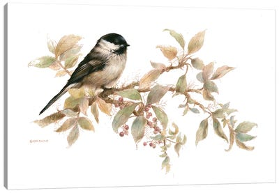 Chickadee Vignette Canvas Art Print