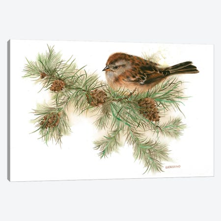 Hight In The Pines Canvas Print #GIO34} by Giordano Studios Canvas Wall Art
