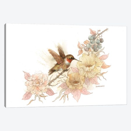 Hummingbird Vignette Canvas Print #GIO36} by Giordano Studios Canvas Artwork