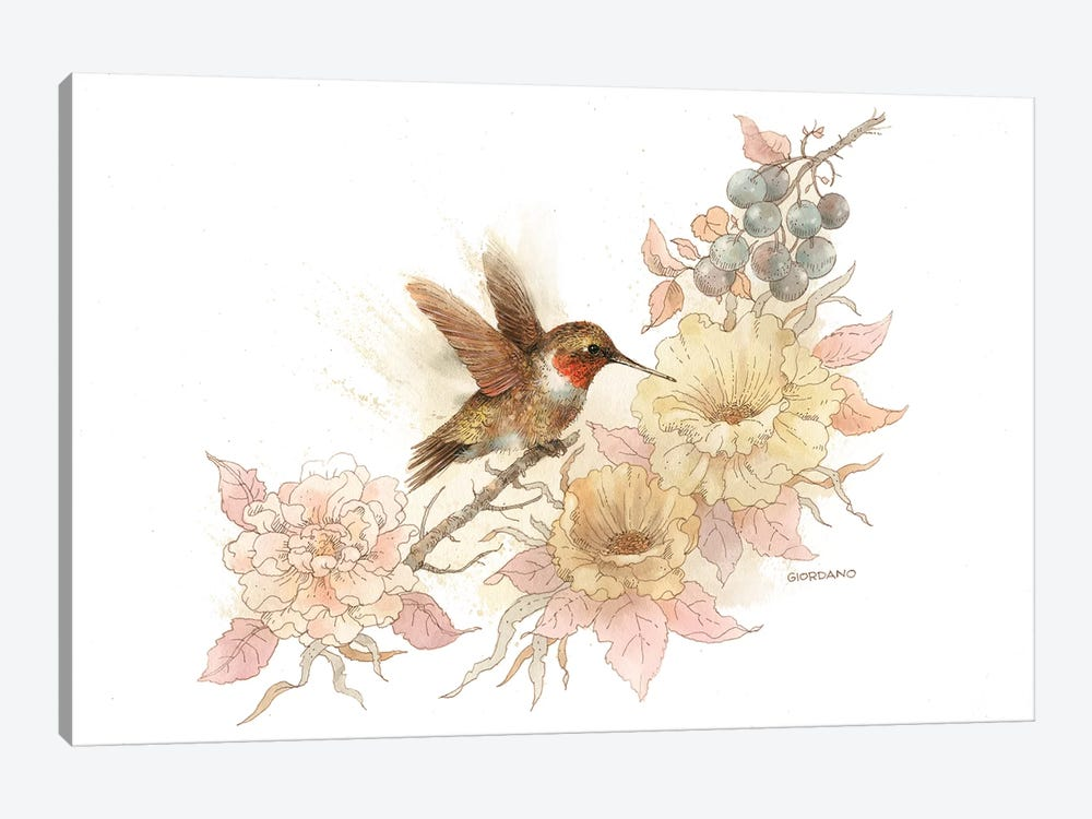 Hummingbird Vignette by Giordano Studios 1-piece Art Print