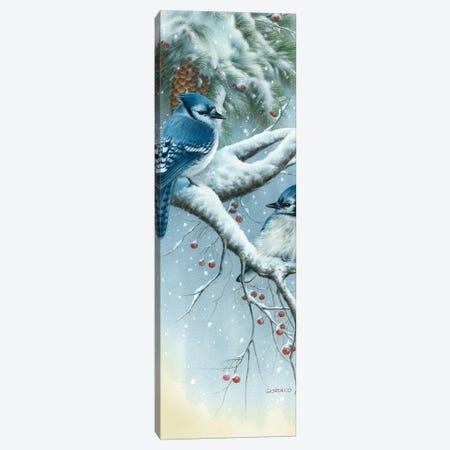 Jays And Pine Canvas Print #GIO37} by Giordano Studios Canvas Art