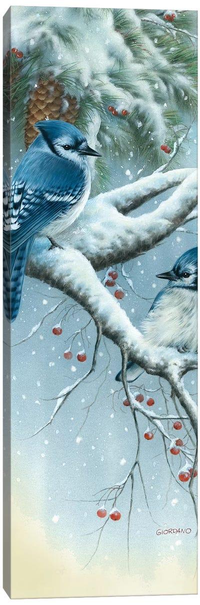Jays And Pine Canvas Art Print