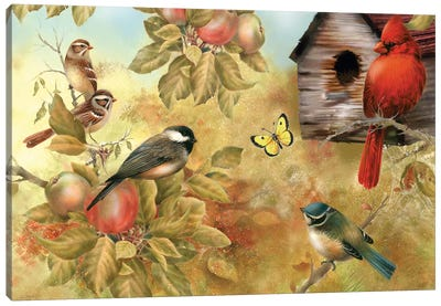 Of Apples And Songbirds Canvas Art Print
