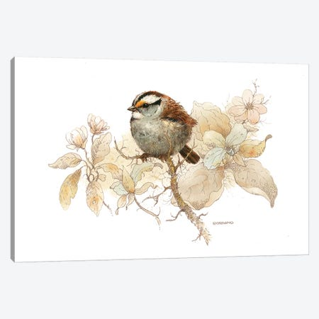 Sparrow Vignette Canvas Print #GIO42} by Giordano Studios Canvas Artwork