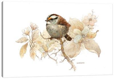 Sparrow Vignette Canvas Art Print