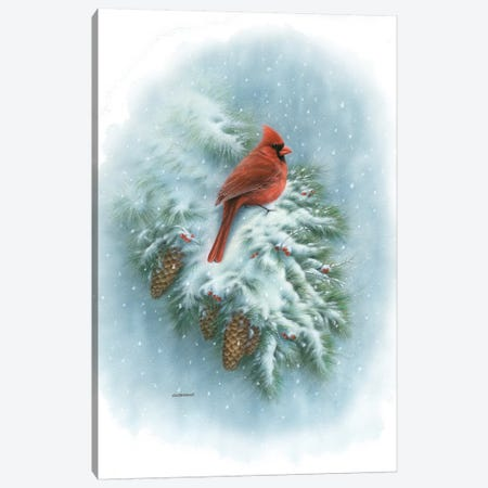 Winter Vignette Canvas Print #GIO44} by Giordano Studios Art Print