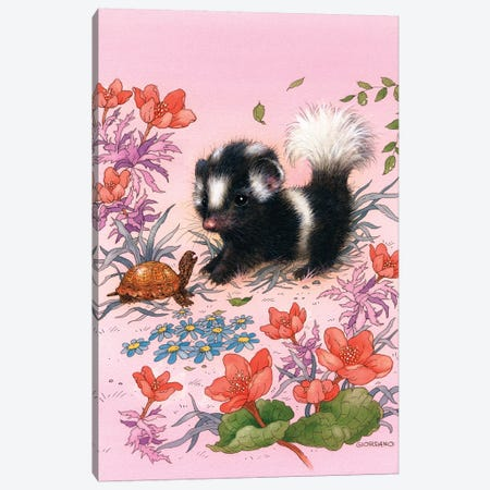 Baby Skunk Canvas Print #GIO4} by Giordano Studios Canvas Art Print