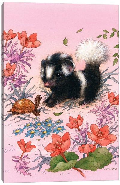 Baby Skunk Canvas Art Print