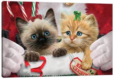 Santa's Surprise Canvas Art Print