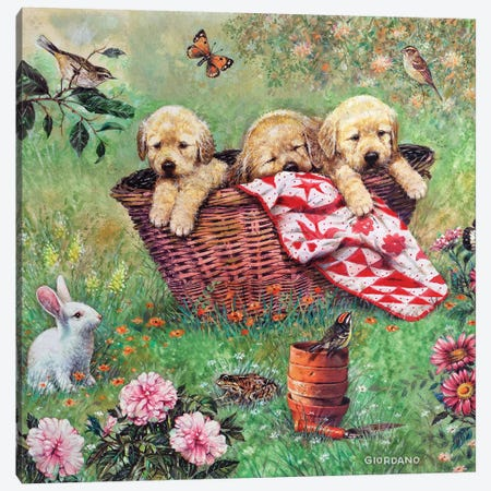Basket Of Cheer 3-Piece Canvas #GIO85} by Giordano Studios Canvas Print
