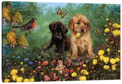 Labs In The Meadow Canvas Art Print