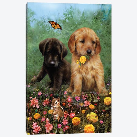 Labs In The Meadow Canvas Print #GIO94} by Giordano Studios Canvas Art