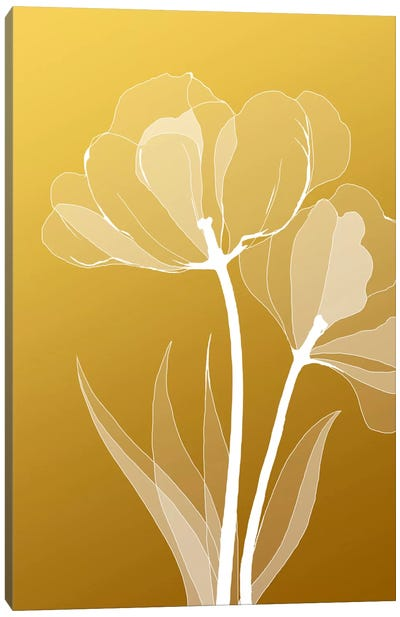 Floral VI Canvas Art Print