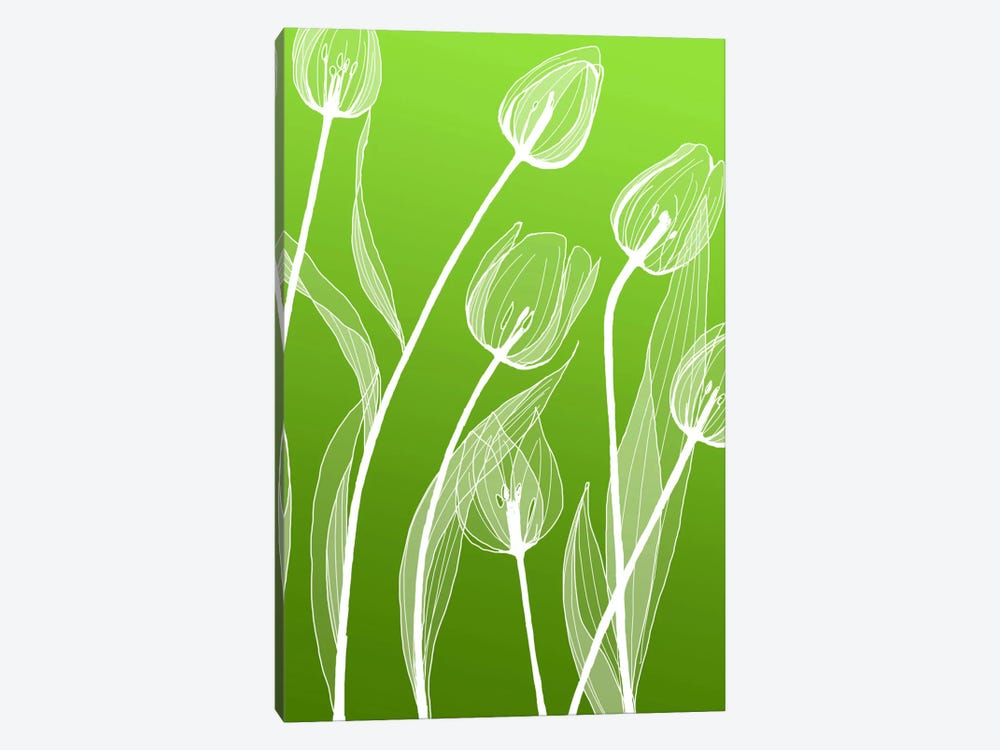 Floral IV by GraphINC Studio 1-piece Canvas Wall Art