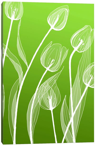 Floral IV Canvas Art Print
