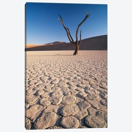 Desert Landscape, Sossusvlei, Namib Desert, Namib-Naukluft Park, Namibia Canvas Print #GJE1} by Gavriel Jecan Canvas Print