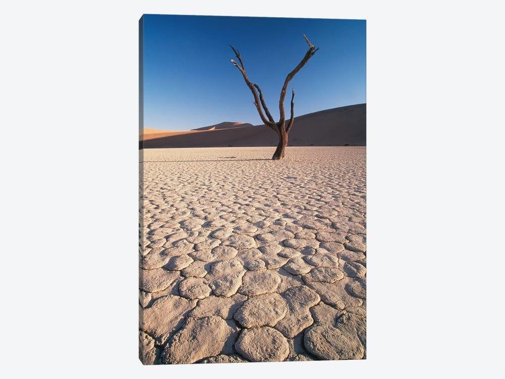 Desert Landscape, Sossusvlei, Namib Desert, Namib-Naukluft Park, Namibia by Gavriel Jecan 1-piece Canvas Print