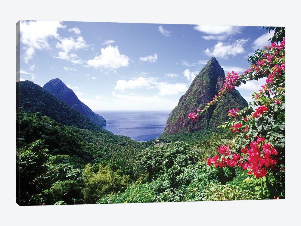 Coastal Landscape, Pitons Bay, Saint Lucia by Greg Johnston 1-piece Canvas Art Print