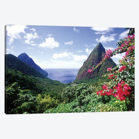 Coastal Landscape, Pitons Bay, Saint Lucia Canvas Print #GJO1} by Greg Johnston Canvas Art Print