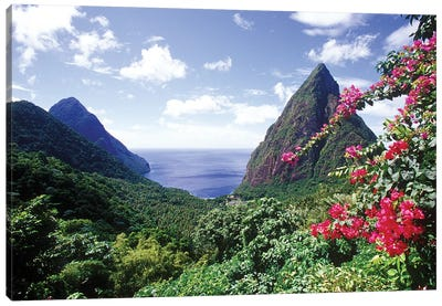 Coastal Landscape, Pitons Bay, Saint Lucia Canvas Art Print