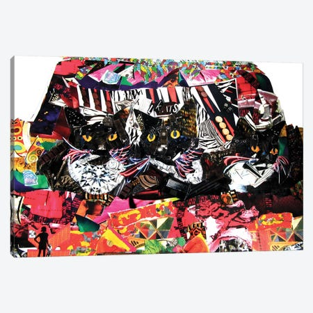 Cool Cats Canvas Print #GLL12} by Glil Canvas Art