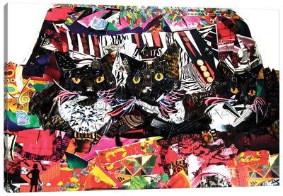 Cool Cats Canvas Art Print