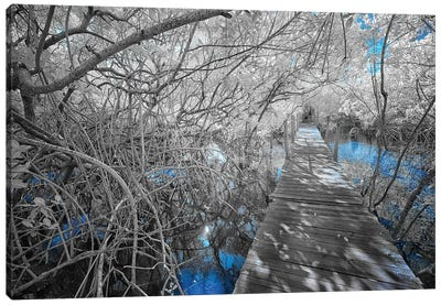 Boardwalk - Bahia, Brazil Canvas Art Print