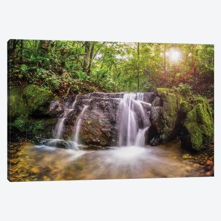 Waterfall II - Sao Paulo, Brazil Canvas Print #GLM158} by Glauco Meneghelli Canvas Art Print