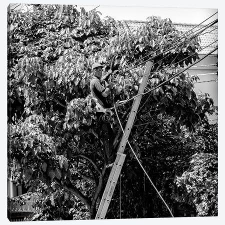 Street Photography IV Canvas Print #GLM181} by Glauco Meneghelli Canvas Art