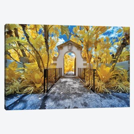 Miami Infrared III Canvas Print #GLM257} by Glauco Meneghelli Canvas Art Print
