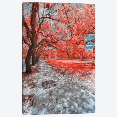 Miami Infrared IV Canvas Print #GLM258} by Glauco Meneghelli Canvas Artwork