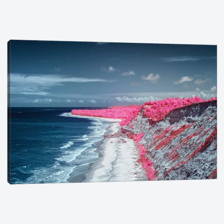 Costal Magenta Beach - Bahia, Brazil Canvas Print #GLM27} by Glauco Meneghelli Canvas Art Print