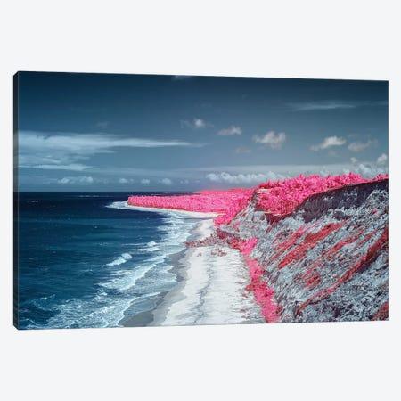 Costal Magenta Beach - Bahia, Brazil Canvas Print #GLM27} by Glauco Meneghelli Canvas Art Print