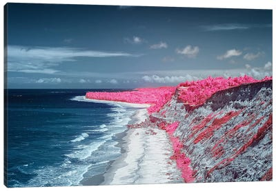 Costal Magenta Beach - Bahia, Brazil Canvas Art Print