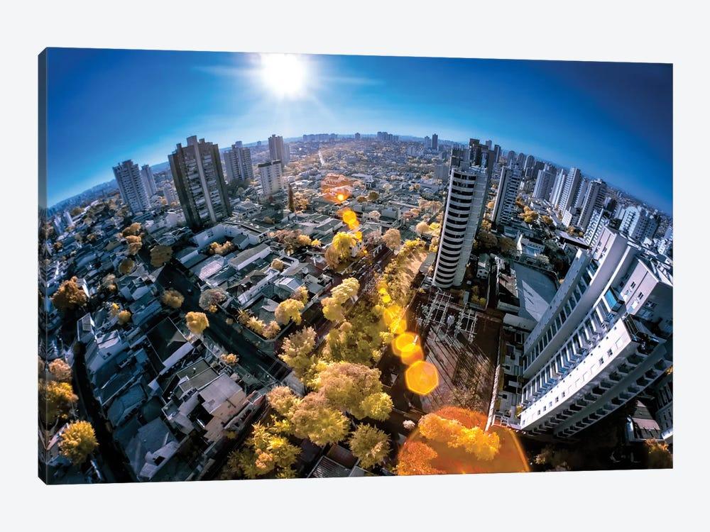 Fisheye - Sao Paulo, Brazil by Glauco Meneghelli 1-piece Canvas Art