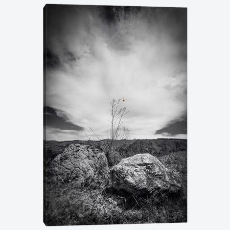 Landscape13 Canvas Print #GLM441} by Glauco Meneghelli Canvas Print