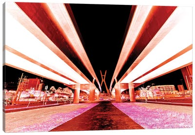 Sao Paulo Bridge I Canvas Art Print