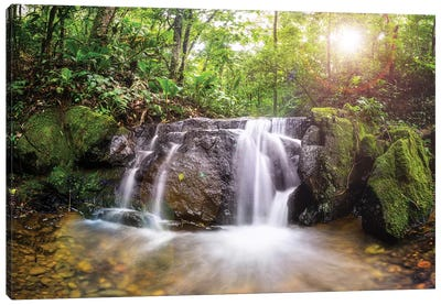 Waterfall I Canvas Art Print