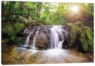 Waterfall I Canvas Art Print