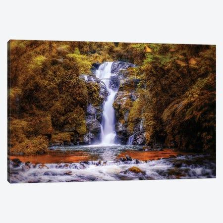 Waterfall III Canvas Print #GLM552} by Glauco Meneghelli Art Print