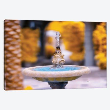 Fountain Infrared Photo Canvas Print #GLM559} by Glauco Meneghelli Art Print