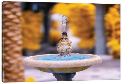 Fountain Infrared Photo Canvas Art Print