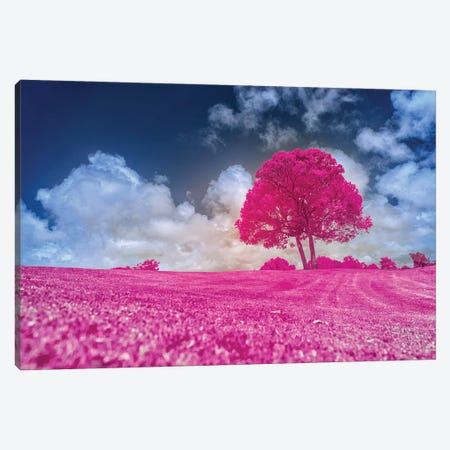 Pink Tree Canvas Print #GLM575} by Glauco Meneghelli Canvas Artwork