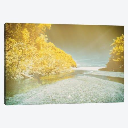 Canvas Beach Canvas Print #GLM660} by Glauco Meneghelli Art Print