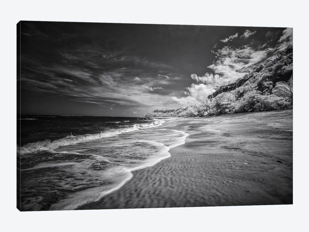 Beach Black & White - Bahia, Brazil by Glauco Meneghelli 1-piece Art Print